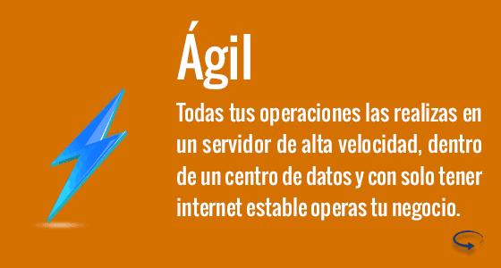 Agil Front N